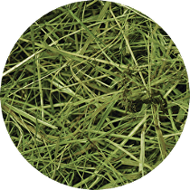 Seno luční RabbitWeed 0,6kg