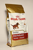 Royal canin Breed Jezevčík Junior 1,5kg