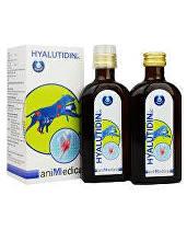 GRAMME-REVIT Hyalutidin DC AKTIV 2x125ml