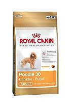 Royal canin Breed Pudl 500g